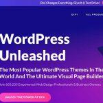Welches Wordpress Theme?