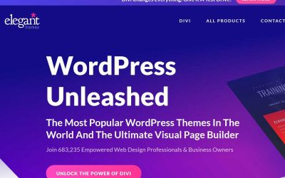 Welches WordPress Theme?